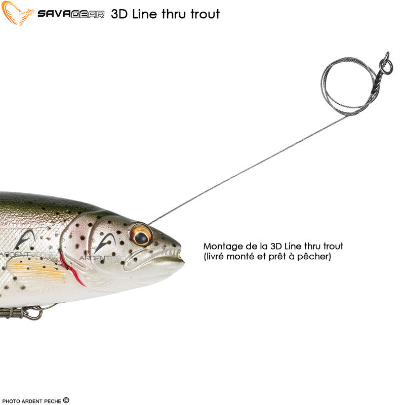 Savage gear 3D Line trout I-Grande-17513-leurre-souple-savage-gear-3d-line-thru-trout-15cm.net